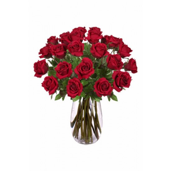 24 Long Stem Roses Bouquet